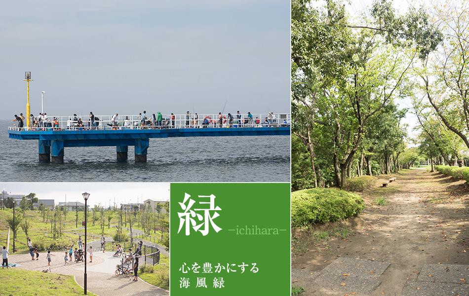 心を豊かにする市原の海・風・緑