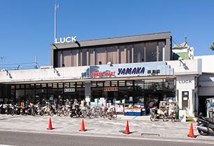 豊かな商業施設のある鎌倉
