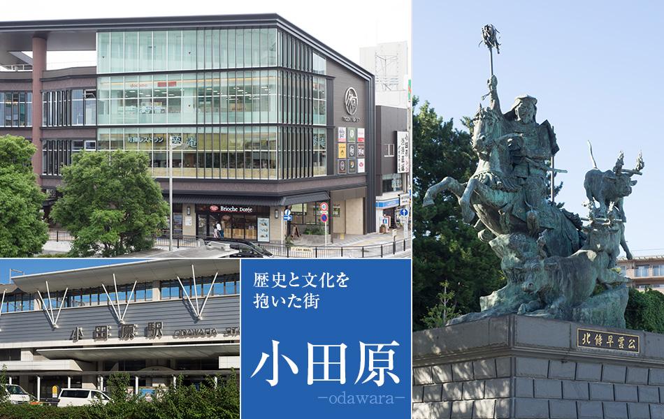 歴史と文化を抱いた街、小田原