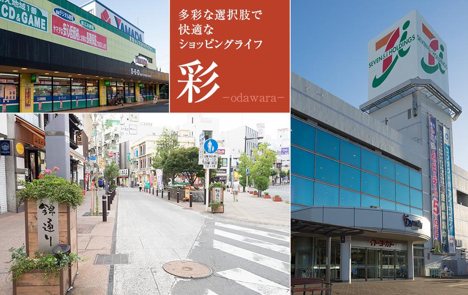 多彩な選択肢で快適なショッピングができる小田原