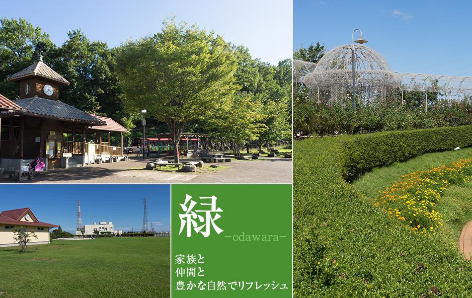 小田原の緑あふれる環境