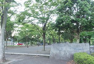 上府中公園(小田原球場)
