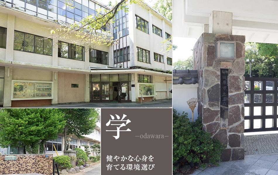 小田原の健やかな心身を育てる環境