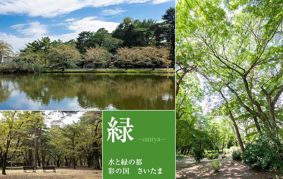 大宮の緑あふれる環境