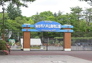 仙台市八木山動物園
