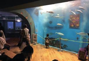 浜名湖体験学習施設「ウォット」