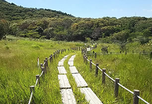 葦毛湿原(自然公園)