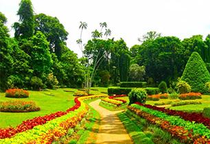 あずま水生植物公園