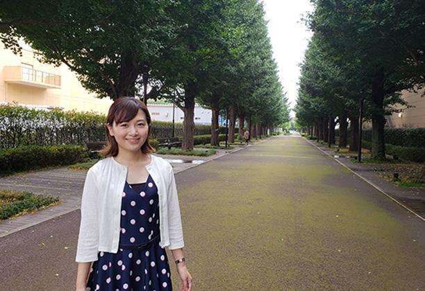 昭島市_いちょう並木